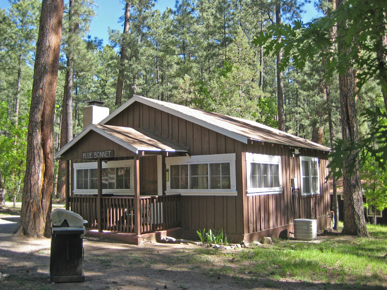 Bluebonnet Rental Cabin